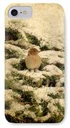 Sparrow In Winter II - Textured IPhone Case by Angie Tirado