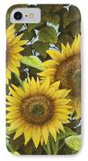 Summer Quintet IPhone Case by Marc Dmytryshyn