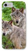 Timber Wolf Pair IPhone Case by Michael Cummings