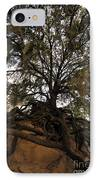 Under Spanish Moss IPhone Case by David Lee Thompson