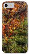 Vineyard 13 IPhone Case by Xueling Zou