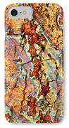 Wood And Rust IPhone Case by Carol Groenen