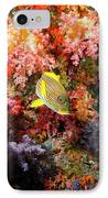 Yellow Banded Sweetlip Fish And Coral IPhone Case by Beverly Factor