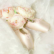 Ballet Shoes Poster by Theresa Tahara