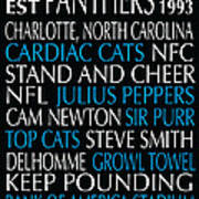 Carolina Panthers Poster by Jaime Friedman