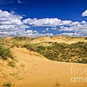 Desert Landscape In Manitoba Poster by Elena Elisseeva
