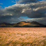 Landscape Of Windy Wheat Field In Front Of Mountain Range With D Poster by Matthew Gibson