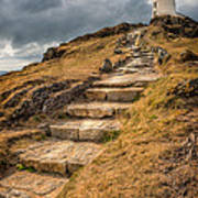 Lighthouse Steps Poster by Adrian Evans