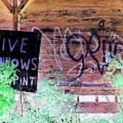 Live Minnows Poster by Dietrich ralph  Katz
