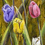 Splashy Tulips Poster by Vic  Mastis