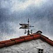 Weathered Weathervane Poster by Carol Leigh