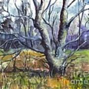 A Tree For Thee Poster by Carol Wisniewski