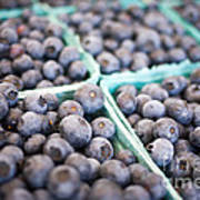 Fresh Blueberries Poster by Edward Fielding
