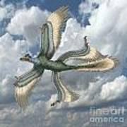 Microraptor Poster by Spencer Sutton