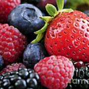Assorted Fresh Berries Poster by Elena Elisseeva