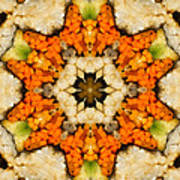 Kaleidoscope Vegetable Sushi Poster by Amy Cicconi