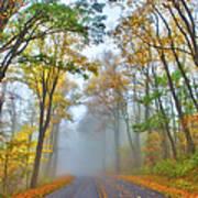 A Foggy Drive Into Autumn - Blue Ridge Parkway Poster by Dan Carmichael