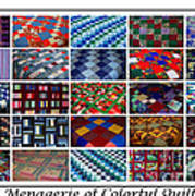 A Menagerie Of Colorful Quilts  Poster by Barbara Griffin