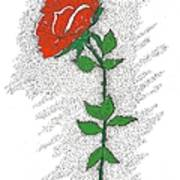 A Rose For You Poster by Glenn McCarthy Art and Photography