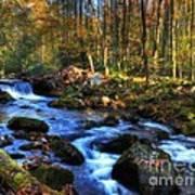 A Smoky Mountain Autumn Poster by Mel Steinhauer