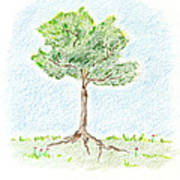 A Young Tree Poster by Keiko Katsuta