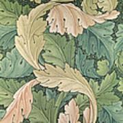 Acanthus Wallpaper Design Poster by William Morris