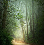 Along The Path Poster by Svetlana Sewell