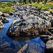 Alpine Stream Beartooth Mounain Range Poster by Edward Fielding