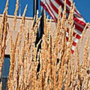 Amber Waves Of Grain And Flag Poster by Valerie Garner