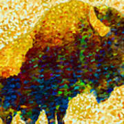 American Bison Poster by Jack Zulli