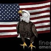 American Eagle Poster by Karen Sheltrown