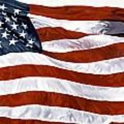 American Flag Poster by John Zaccheo