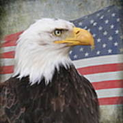 American Pride Poster by Angie Vogel