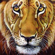 Andre Lion Poster by Jurek Zamoyski