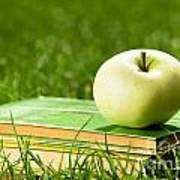 Apple On Pile Of Books On Grass Poster by Michal Bednarek