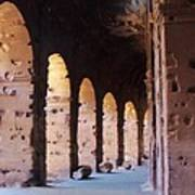 Arches Of The Roman Coliseum Poster by Jan Moore