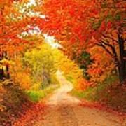 Autumn Cameo 2 Poster by Terri Gostola