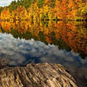 Autumn Day Poster by Karol Livote