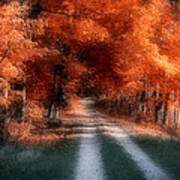 Autumn Lane Poster by Tom Mc Nemar