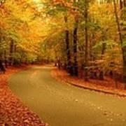 Autumn Serenity - Holmdel Park  Poster by Angie Tirado