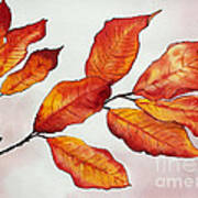 Autumn Poster by Shannan Peters