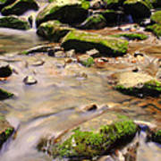 Babbling Brook Poster by Frozen in Time Fine Art Photography