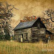 Backwoods Cabin Poster by Steve McKinzie