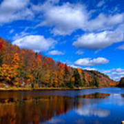 Bald Mountain Pond In Autumn Poster by David Patterson