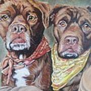 Bandana Dogs Poster by Stephanie Dunn