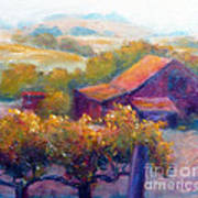 Barn Vineyard Poster by Carolyn Jarvis