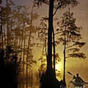 Bayou Sunrise Poster by Lianne Schneider