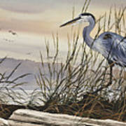 Beauty Along The Shore Poster by James Williamson