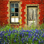 Beauty And The Door - Texas Bluebonnets Wildflowers Landscape Door Flowers Poster by Jon Holiday