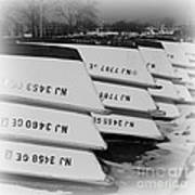 Belmar Marina Rowboats Poster by Paul Ward